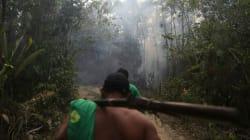 Στον Αμαζόνιο μια φυλή μάχεται σώμα με σώμα για τα τροπικά δάση. Με βέλη, τόξα, κάμερες και