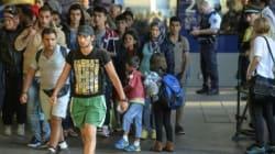 Ces réfugiés qui étudiaient à l'université ou travaillaient avant d'être jetés sur les routes de