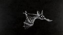 Η «Νυχτερίδα» του Στράους πετάει για