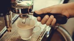 10대 커피전문점 식품위생법 위반 건수