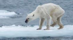 Αυτή η φωτογραφία κρούει τον κώδωνα του κινδύνου για την κλιματική