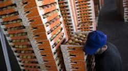 Εξαγωγές: το μυστικό «όπλο» για την ανάκαμψη της