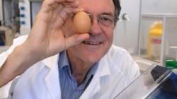 삶은 달걀을 날달걀로 만든 과학자, 이그 노벨상