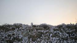 La Mecque: les pèlerins sur le Mont Arafat, moment fort du