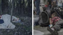 22명 시리아 난민 아이들이 자는 모습을