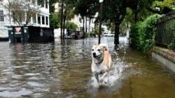 Pluies torrentielles et inondations dans le sud-est des