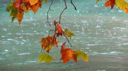 Ο ύπνος του Φθινοπώρου, ο κιρκαδικός ρυθμός μας και η πολύτιμη βιταμίνη