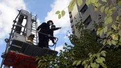 경찰, '캣맘 사망사건' 벽돌 투척 단서