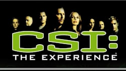 Why the Dearly Departed CSI Was the Show I Waited for My Whole