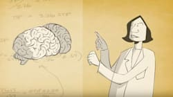 Δείτε πως σχηματίζονται και διαγράφονται οι αναμνήσεις σας σε ένα συνοπτικό βίντεο του