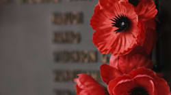 Remembrance and Pacifism Go Hand in Hand: Why I'm Proud to Wear a White Poppy Alongside My Red
