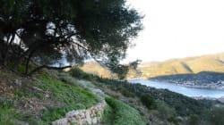 Περιπατητικός Τουρισμός: 13 μαγικές διαδρομές στην ελληνική