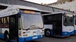 Alger: un transport jour et nuit pour la