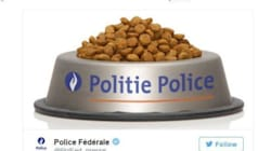 Η αστυνομία Βρυξελλών ευχαρίστησε τις γάτες του Twitter με ένα μπολ