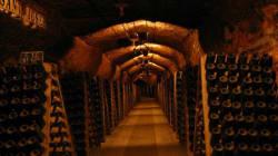 Πως μπορείτε να συντηρήσετε και να αποθηκεύσετε σωστά το κρασί
