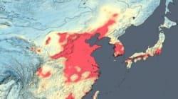 전 세계 '공기 오염 위성지도'가 공개됐다(NASA