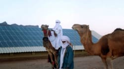 De l'intégrisme religieux à l'intégrisme linguistique, l'Algérie sous séquestre idéologique (2e