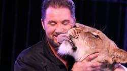 Tiere im Zirkus: Wildtierverbote sind der neue