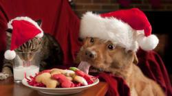Απολαύστε την Πρωτοχρονιά χωρίς να είστε τελειομανείς με τους παρακάτω 5 απλούς