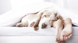 Γιατί ο ύπνος είναι ο καλύτερος φίλος του εγκεφάλου