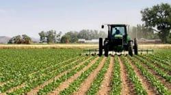 L'assurance agricole ouverte à la