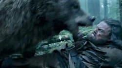 '레버넌트'에서 디카프리오를 공격한 곰의 진짜