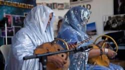 L'imzad, le violon des femmes touareg sauvé de la