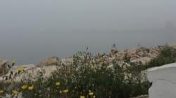 Un épais brouillard s'abat sur Tunis, les Instagrameurs tunisiens sont au