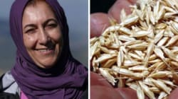 Trois Marocaines récompensées à Marrakech pour leurs actions en faveur de