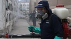 [속보] 일본 도쿄 근처서 지카 바이러스 감염자