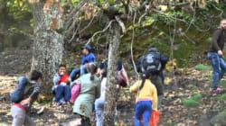 Tizi-Ouzou : relance de l'activité de randonnée