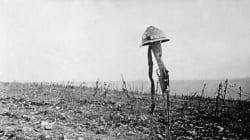 Σαν σήμερα πριν από 100 χρόνια η μάχη του Βερντέν. «Κρεατομηχανή» τη χαρακτήρισαν οι