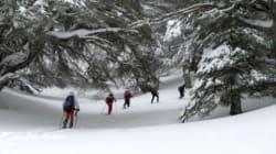 Tissemsilt: le ski fait sa
