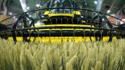 Des connexions entre l'agriculture et les nouvelles