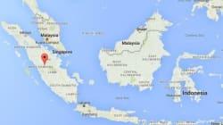 Séisme de magnitude 7,9 dans l'ouest de l'Indonésie, alerte au