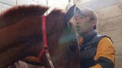 한국에 단 한 명뿐인 '말 전문 마사지사'의