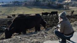 Fukushima: tristes touristes dans une zone de