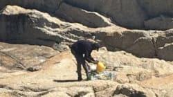 해변의 쓰레기를 줍던 노숙자에게 생긴