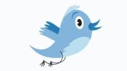 [트위터 10주년] 파랑새 로고의 변천사를