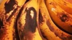 Bob Marley est de retour... sur la peau d'une