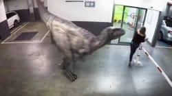 Επική φάρσα με γεύση Jurassic Park: Δεινόσαυρος εμφανίζεται στο πάρκινγκ και αρχίζουν να τρέχουν