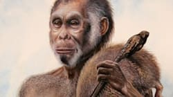 진짜 호빗족은 사실 5만년 전에