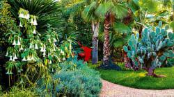 Anima, le nouveau jardin fantaisiste de Marrakech, a ouvert ses portes
