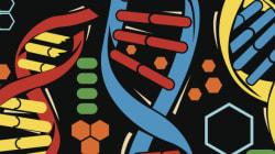 DNA για γενετικούς «σούπερ-ήρωες». Βρέθηκαν «άτρωτοι» άνθρωποι που δεν