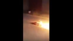 Fatiha, brûlée vive devant l'indifférence d'une administration