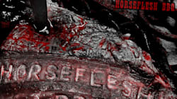 Proll Guns - Horseflesh