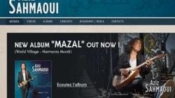 Peu présents sur la toile, les artistes musiciens algériens n'aiment pas le