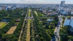 50.000 arbres seront plantés par les élèves de la région