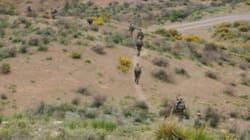 Trois terroristes éliminés à Skikda