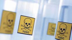 Glyphosat > Insektensterben > Vogelsterben > Krebs für